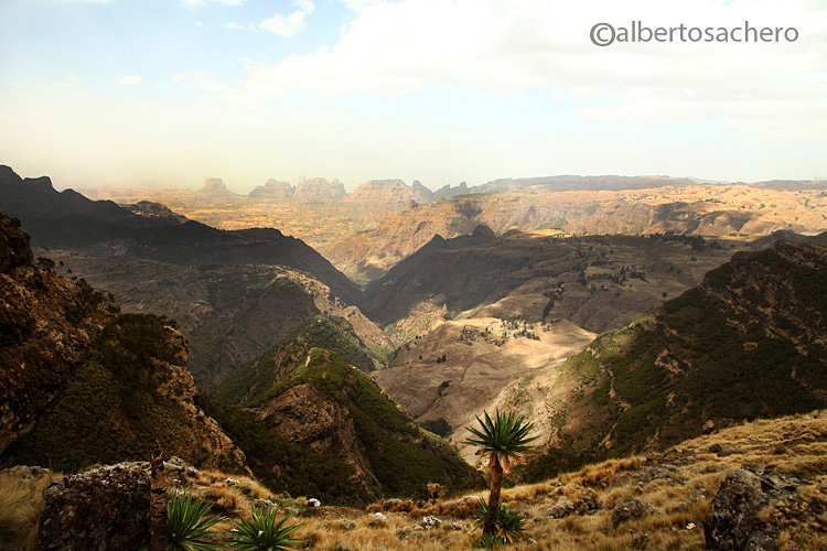 Simien Mountain Park