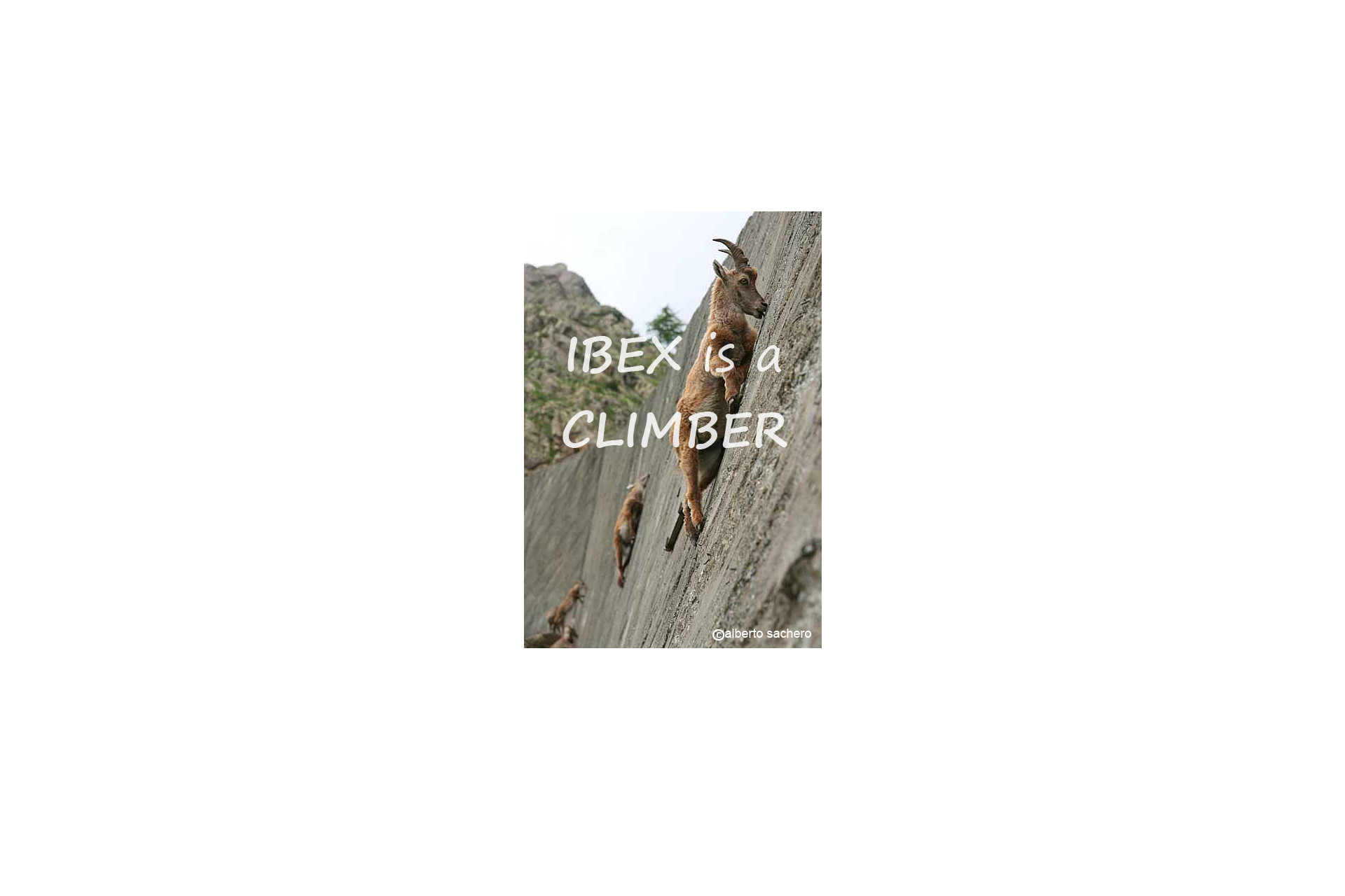 Ibex is a climber
